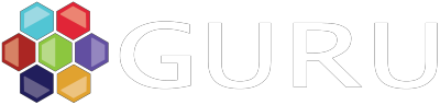 Guru Developments